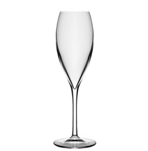 Champagne glass Atelier 20cl