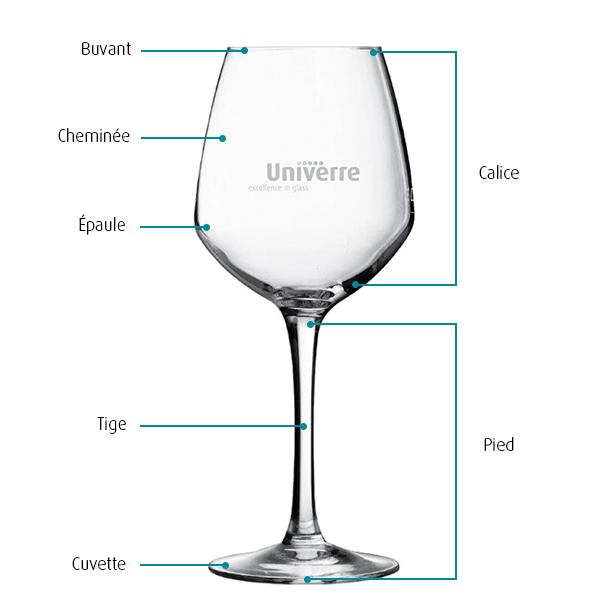 Anatomie verre à vin